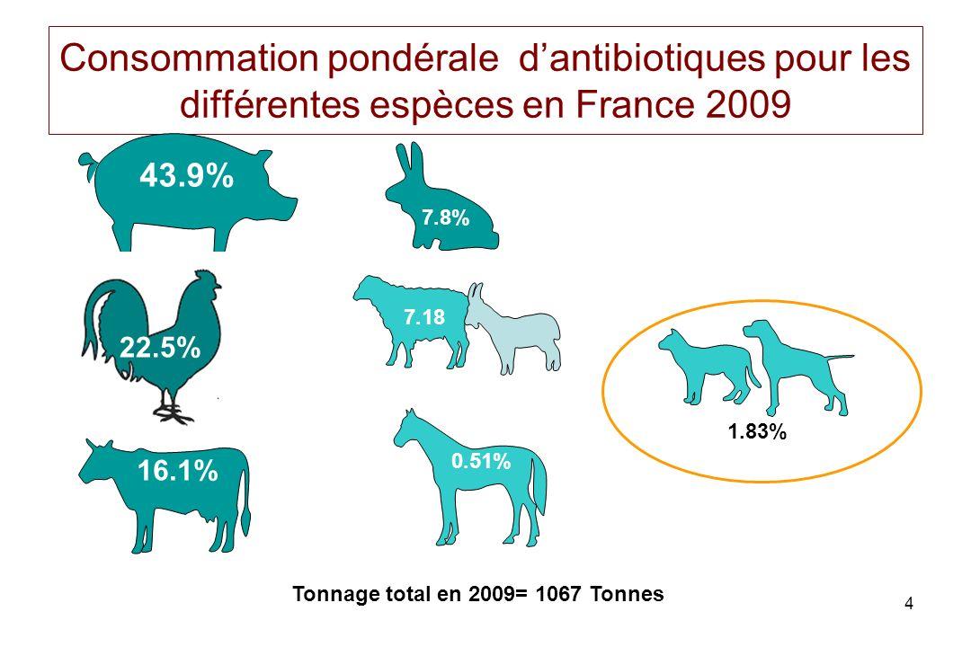 Consommation pondérale d'antibiotiques pour les différentes espèces en France 2009