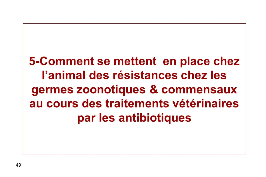 5-Comment se mettent en place chez l'animal des résistances chez les germes zoonotiques & commensaux au cours des traitements vétérinaires par les antibiotiques