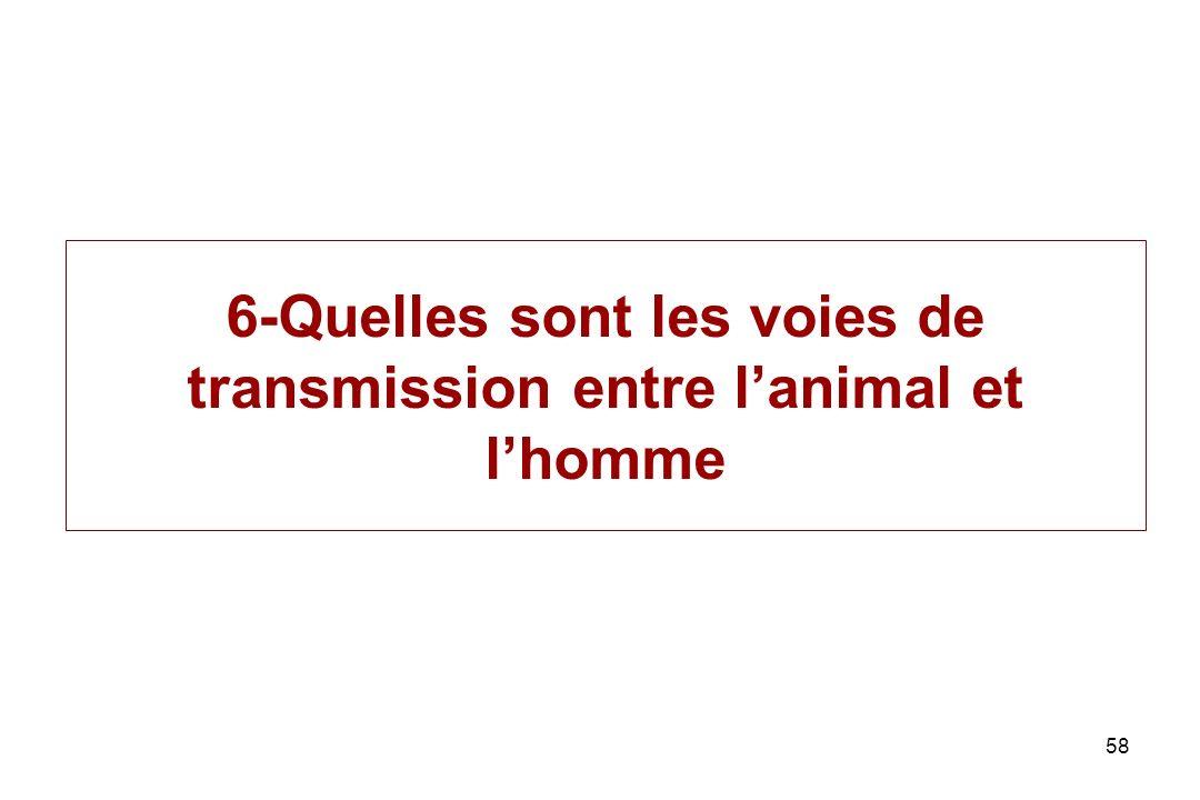 6-Quelles sont les voies de transmission entre l'animal et l'homme