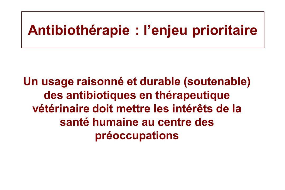 Antibiothérapie : l'enjeu prioritaire