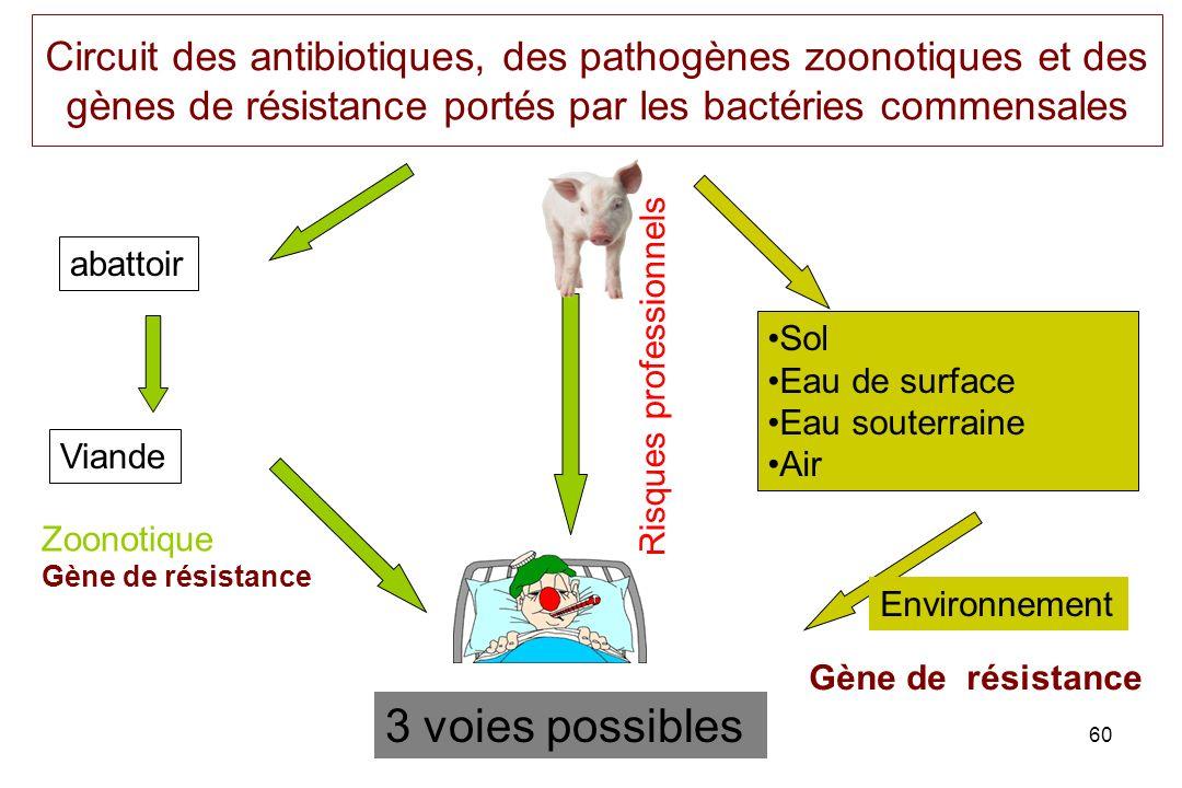 Circuit des antibiotiques, des pathogènes zoonotiques et des gènes de résistance portés par les bactéries commensales