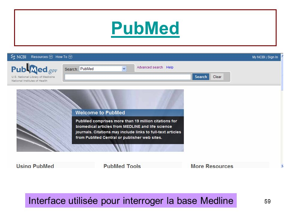 Interface utilisée pour interroger la base Medline