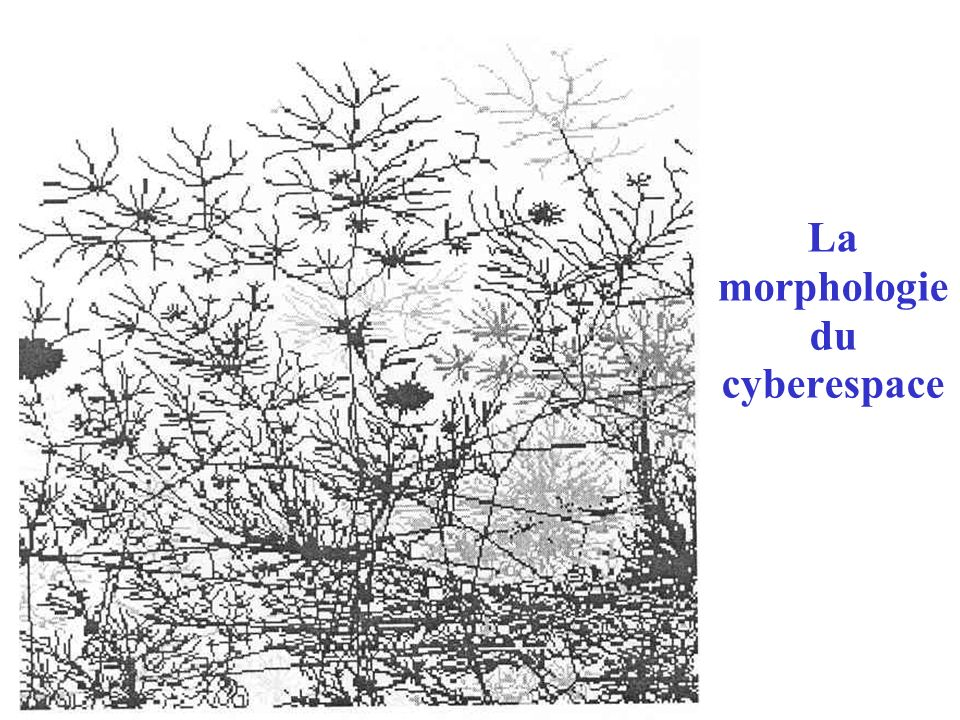 La morphologie du cyberespace
