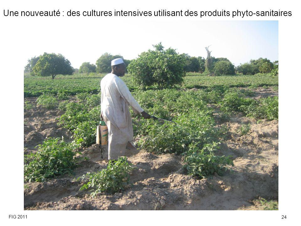 Une nouveauté : des cultures intensives utilisant des produits phyto-sanitaires