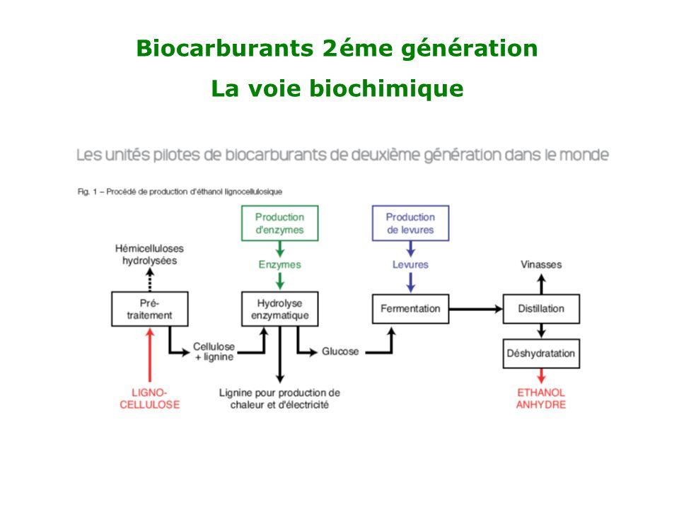 Biocarburants 2 éme génération