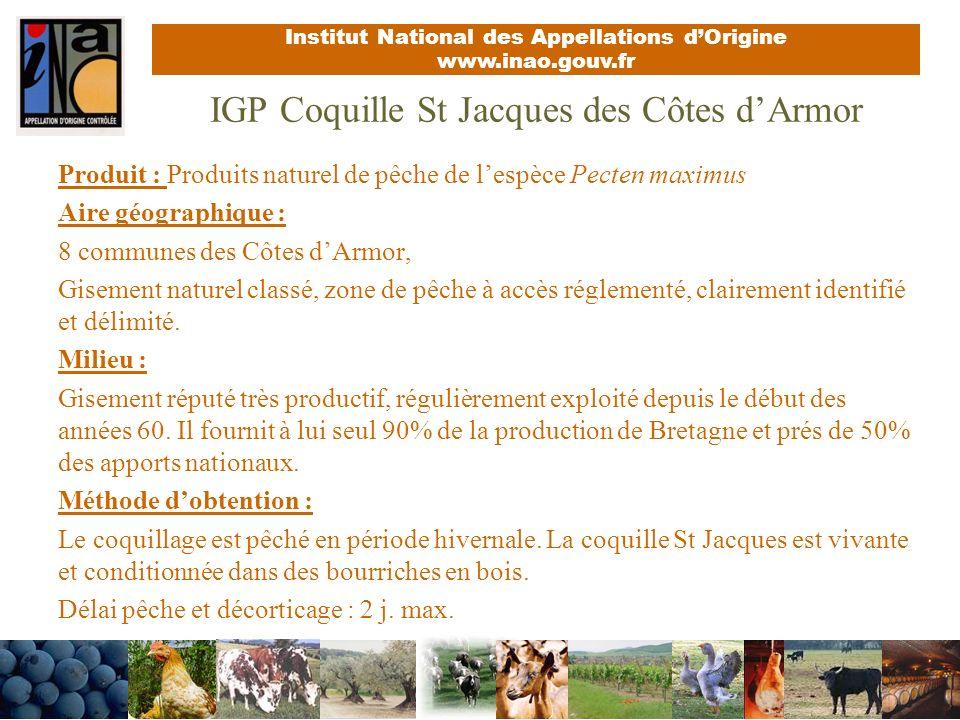 IGP Coquille St Jacques des Côtes d'Armor