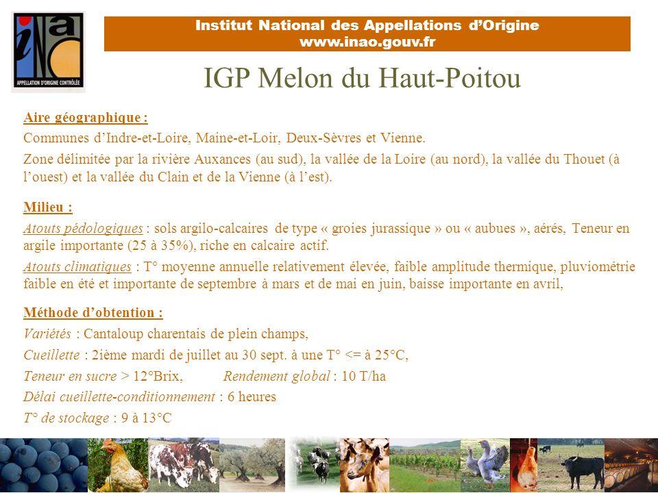 IGP Melon du Haut-Poitou