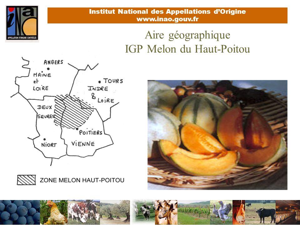 Aire géographique IGP Melon du Haut-Poitou