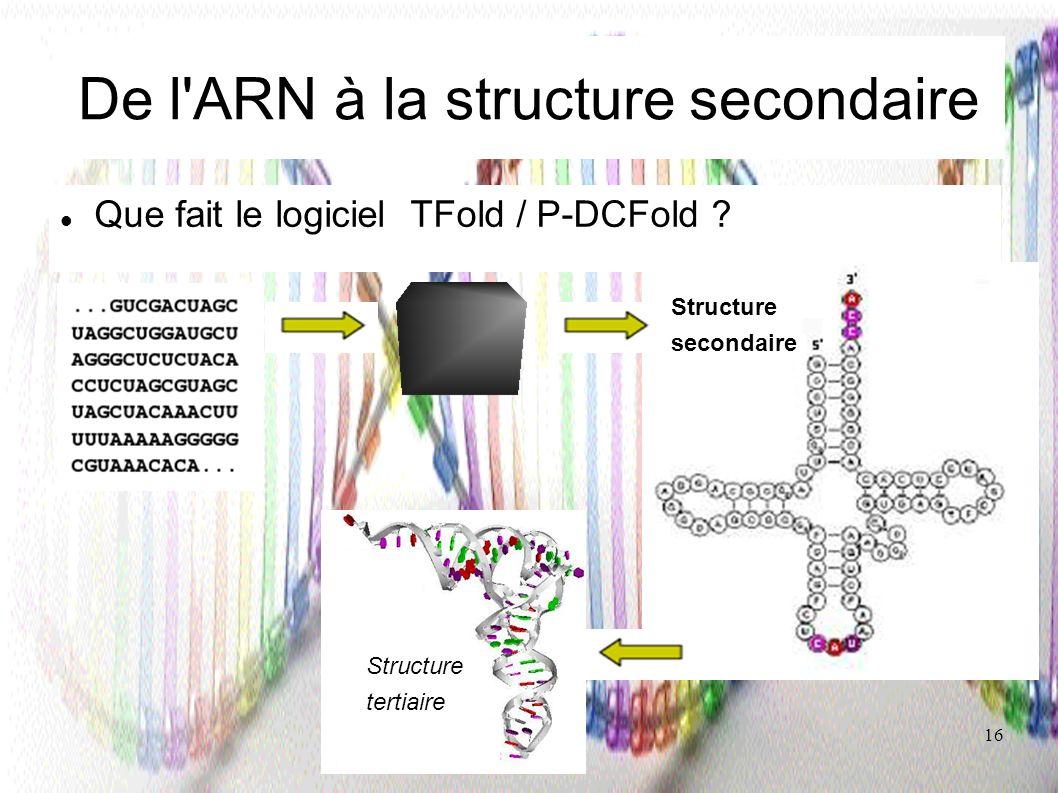 De l ARN à la structure secondaire
