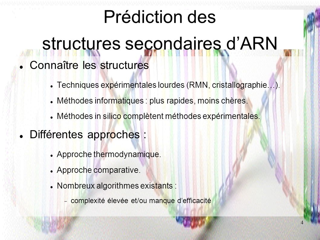 Prédiction des structures secondaires d'ARN