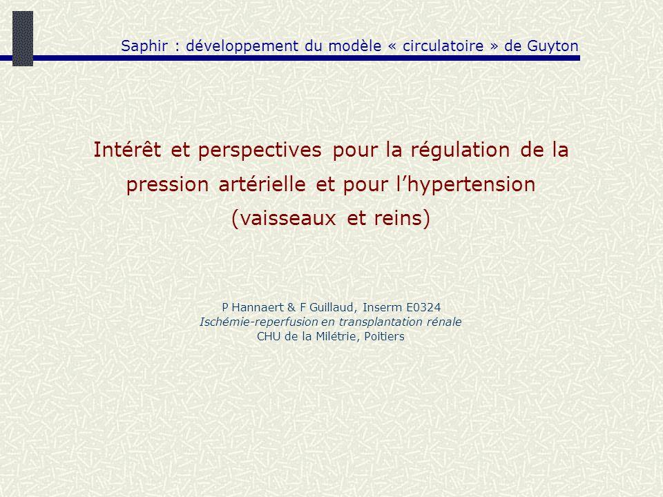 Saphir : développement du modèle « circulatoire » de Guyton