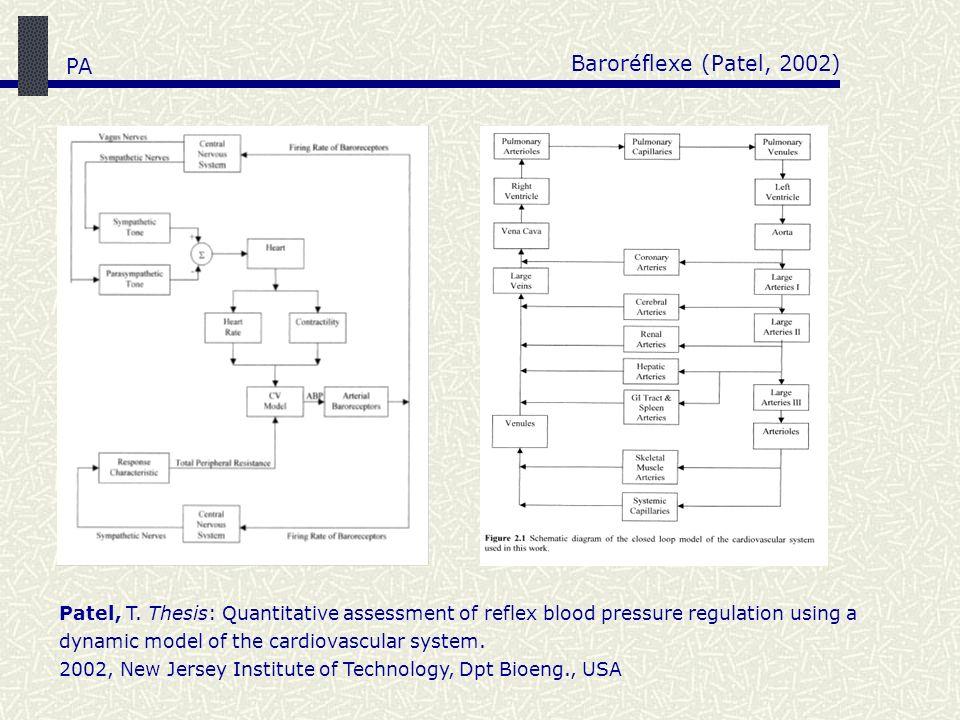 Baroréflexe (Patel, 2002) PA