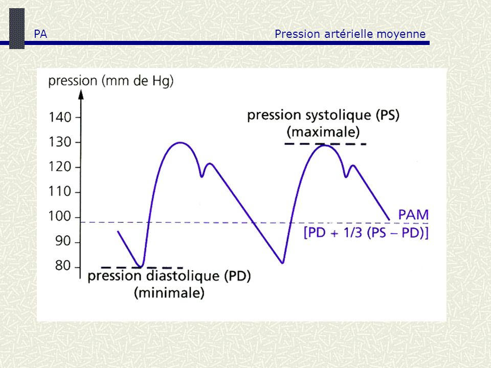 PA Pression artérielle moyenne
