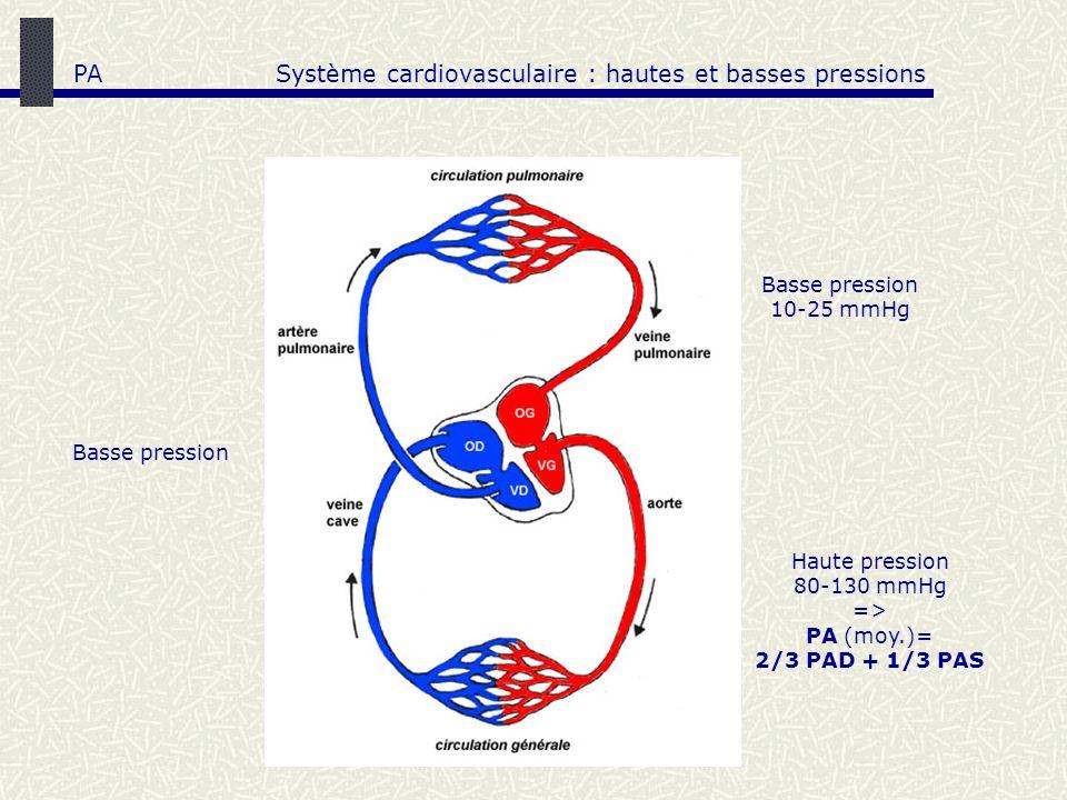 Système cardiovasculaire : hautes et basses pressions