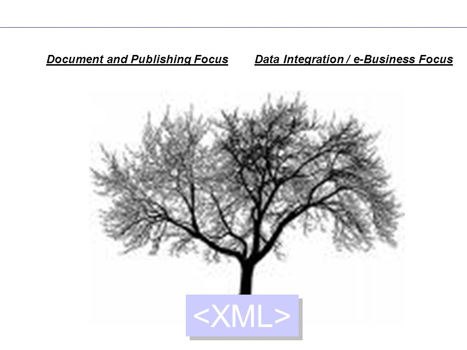 <XML> Document and Publishing Focus