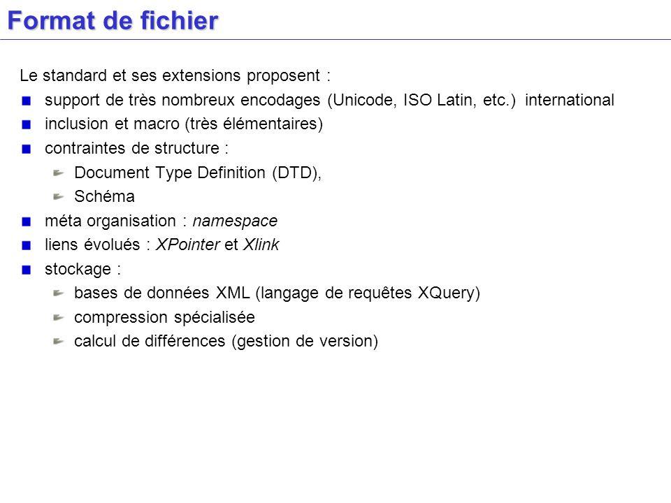 Format de fichier Le standard et ses extensions proposent :