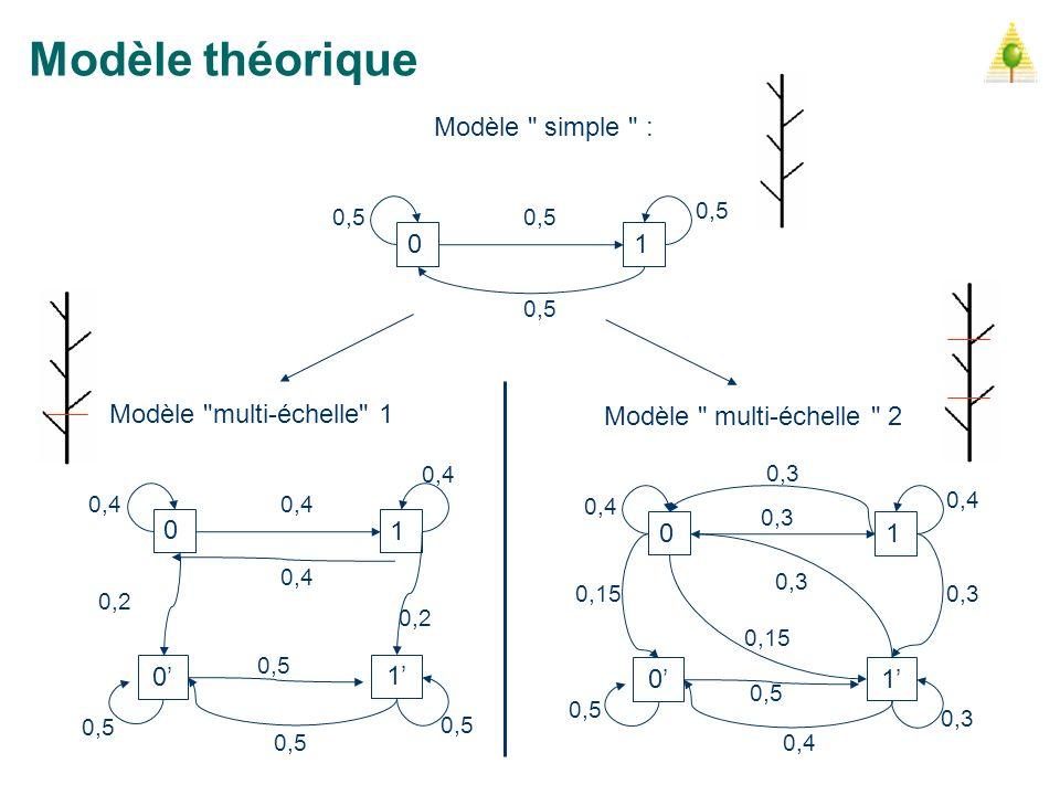 Modèle théorique Modèle simple : 1 Modèle multi-échelle 1
