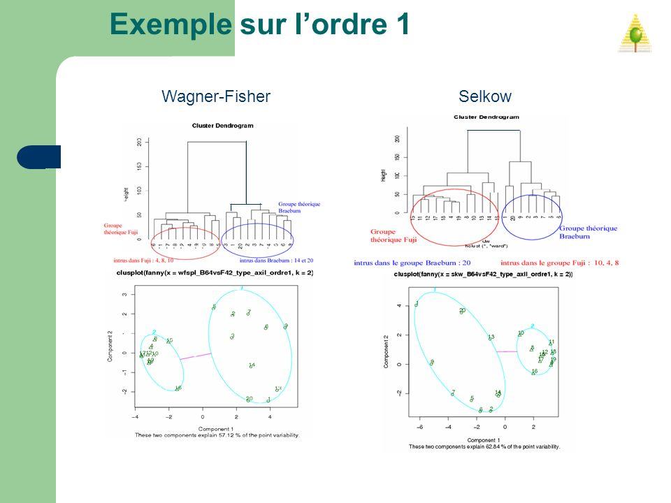 Exemple sur l'ordre 1 Wagner-Fisher Selkow