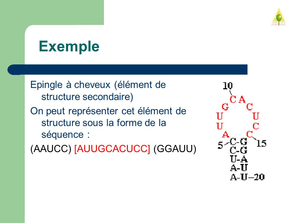 Exemple Epingle à cheveux (élément de structure secondaire)