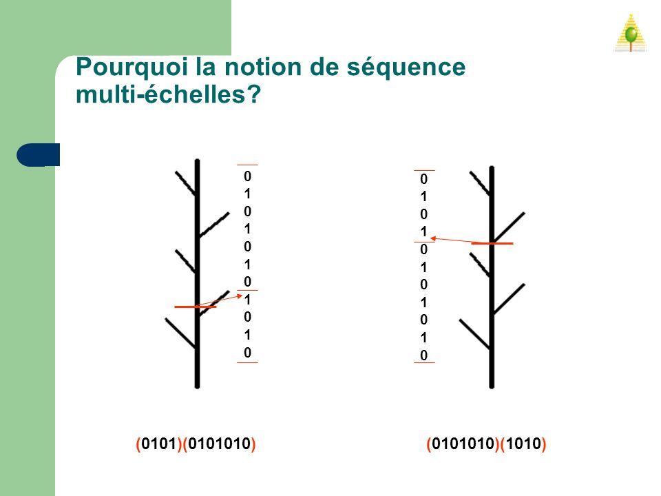 Pourquoi la notion de séquence multi-échelles