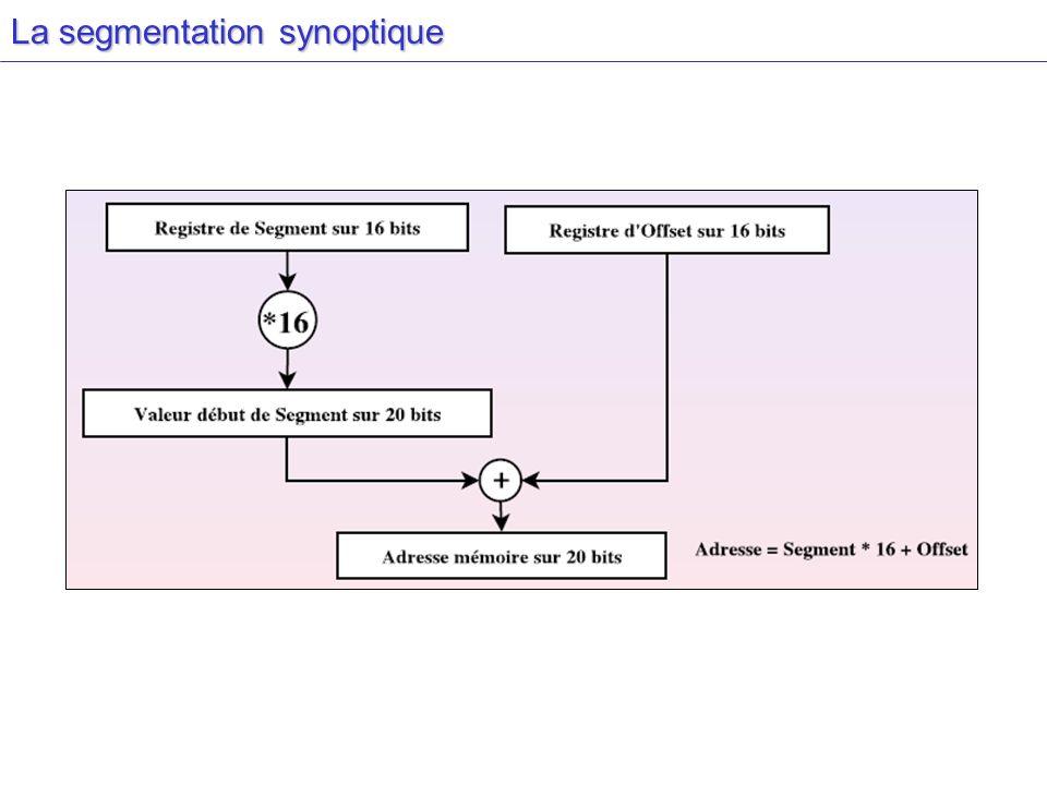 La segmentation synoptique