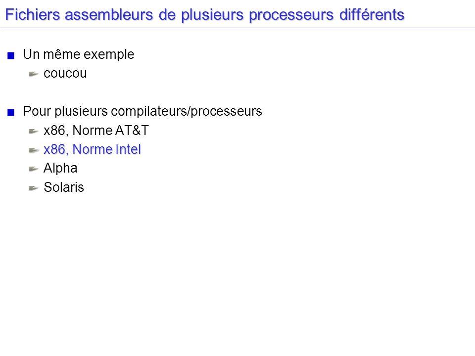 Fichiers assembleurs de plusieurs processeurs différents