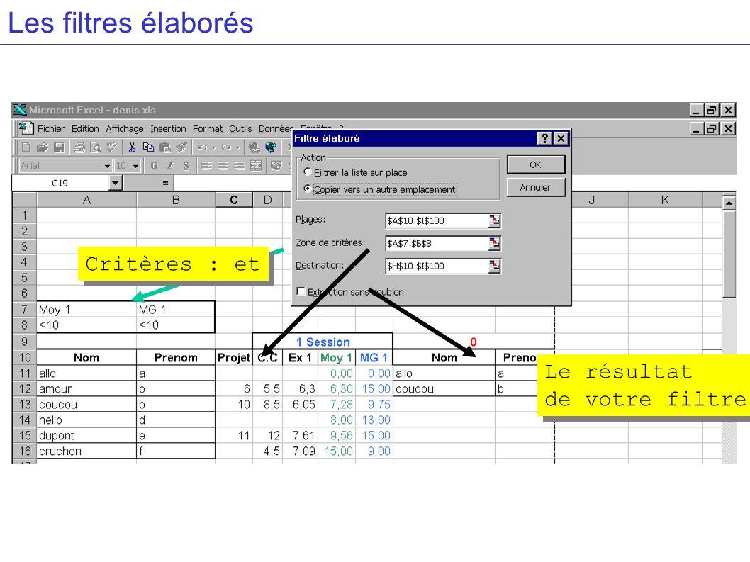 Les filtres élaborés Critères : et Le résultat de votre filtre