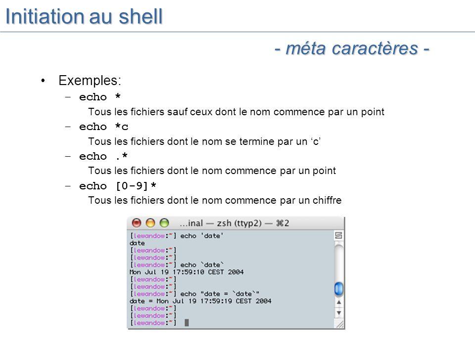 Initiation au shell - méta caractères - Exemples: echo * echo *c