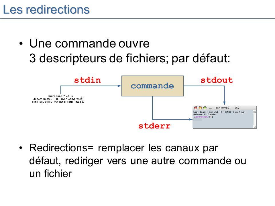 Une commande ouvre 3 descripteurs de fichiers; par défaut: