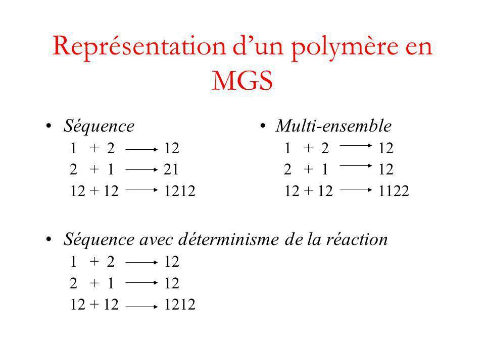 Représentation d'un polymère en MGS