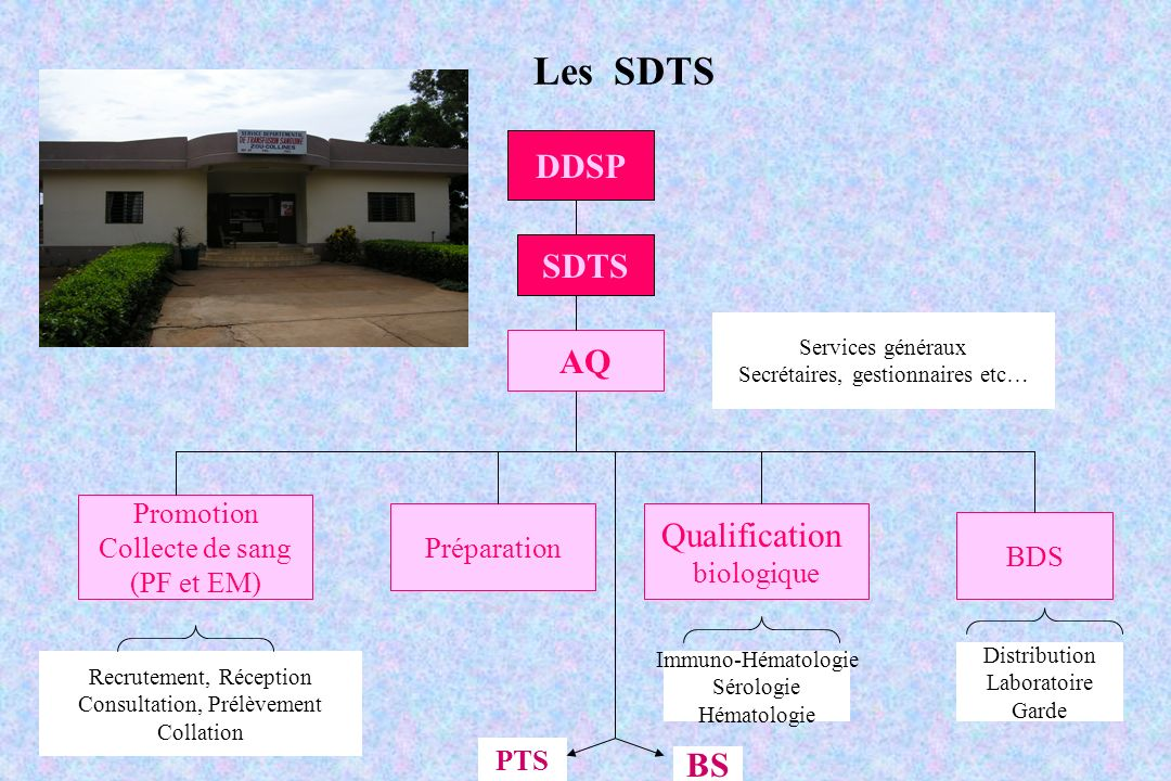 Les SDTS DDSP SDTS AQ Qualification BS Promotion Collecte de sang