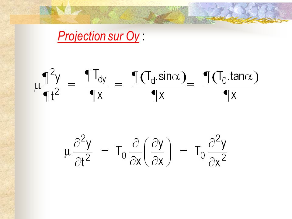 Projection sur Oy :