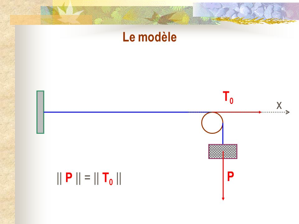 Le modèle T0 x P || P || = || T0 ||