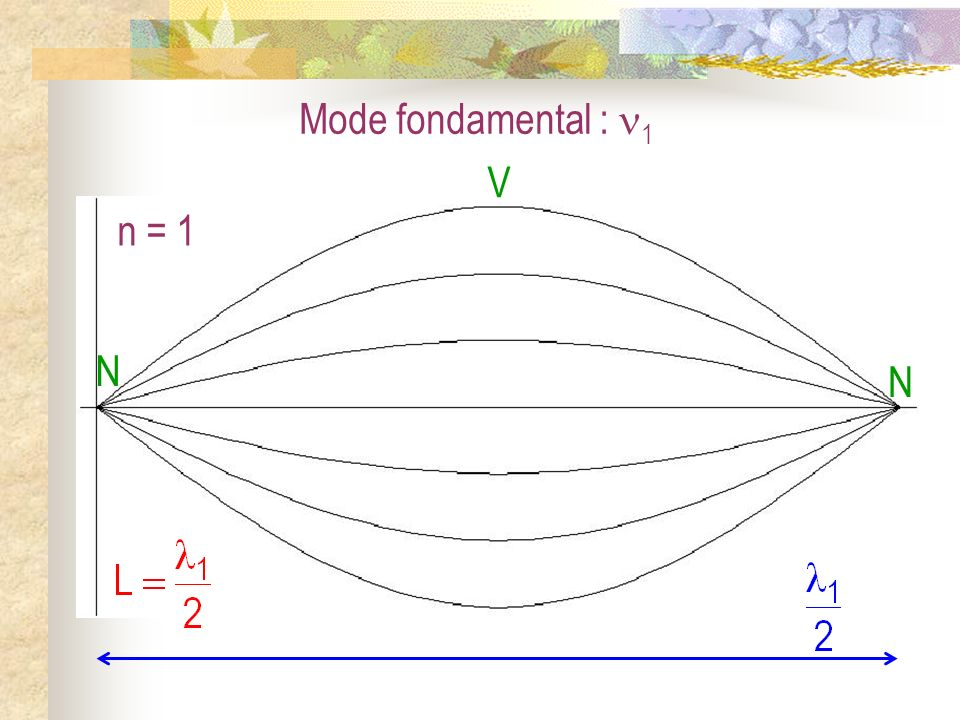 Mode fondamental : 1 N V n = 1