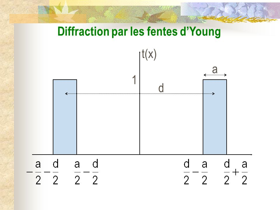Diffraction par les fentes d'Young