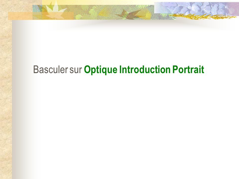 Basculer sur Optique Introduction Portrait