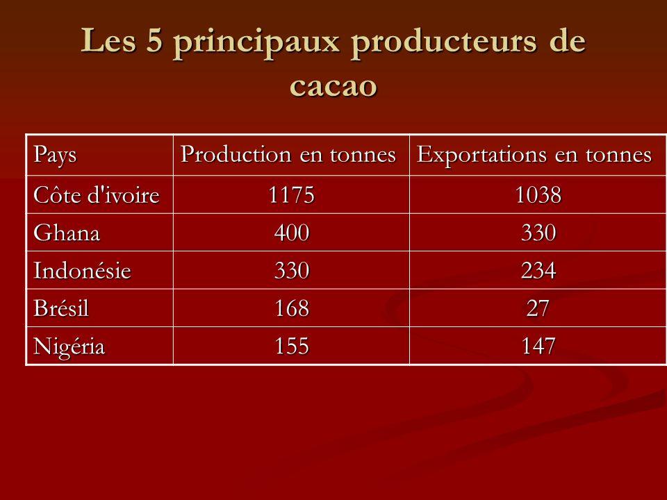 Les 5 principaux producteurs de cacao