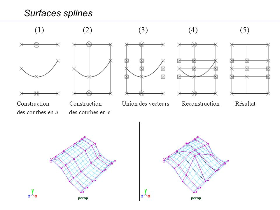 Surfaces splines (1) (2) (3) (4) (5)