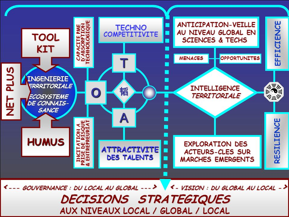 DECISIONS STRATEGIQUES AUX NIVEAUX LOCAL / GLOBAL / LOCAL