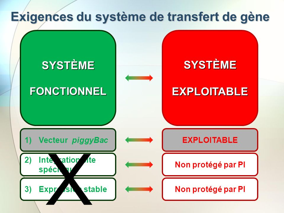 Exigences du système de transfert de gène