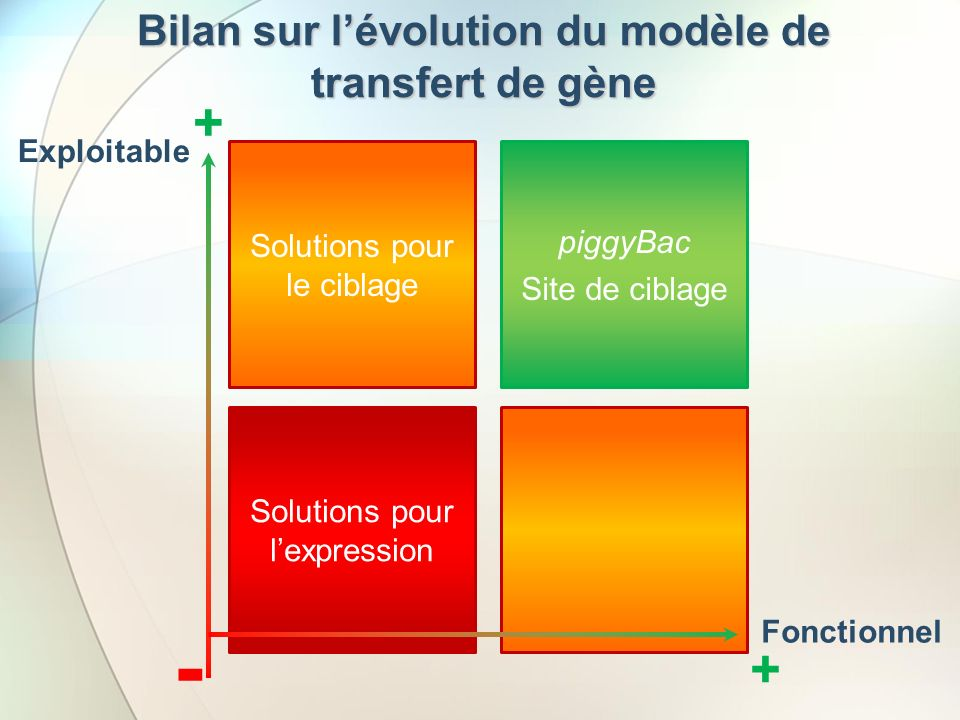 Bilan sur l'évolution du modèle de transfert de gène