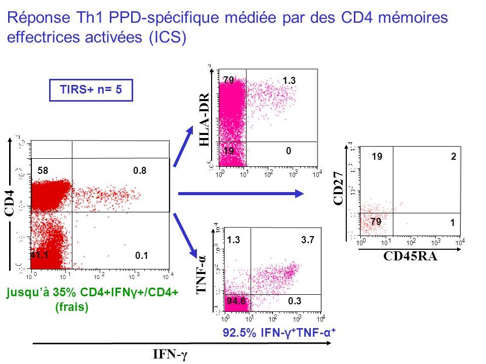 Réponse Th1 PPD-spécifique médiée par des CD4 mémoires effectrices activées (ICS)