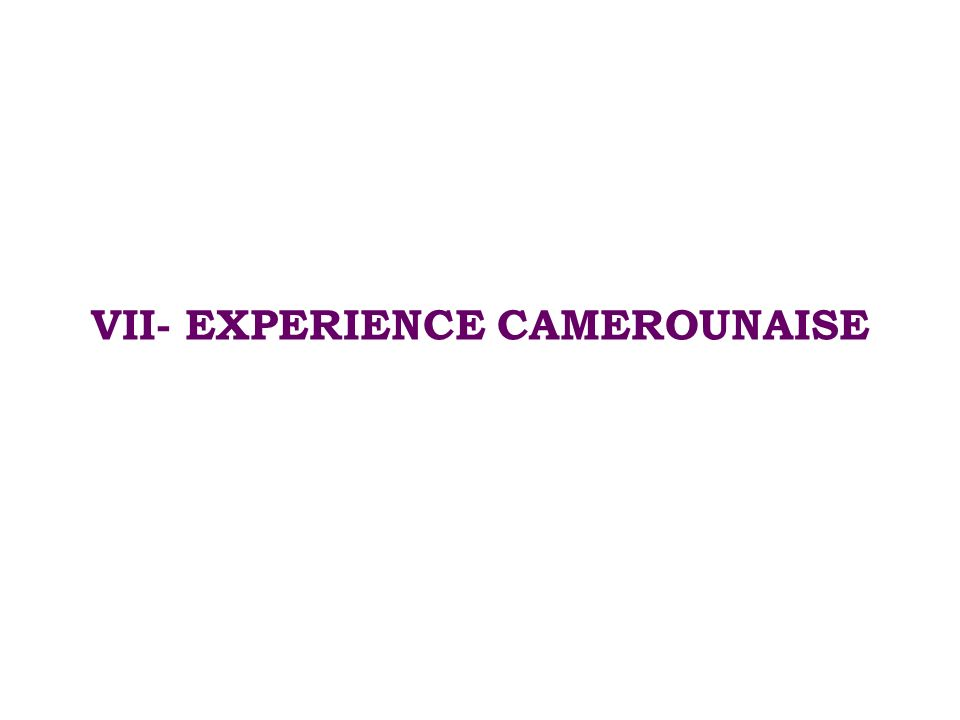 VII- EXPERIENCE CAMEROUNAISE