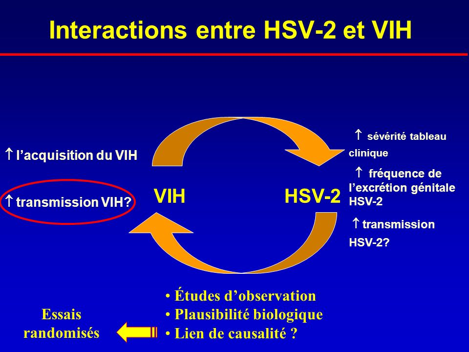 Interactions entre HSV-2 et VIH