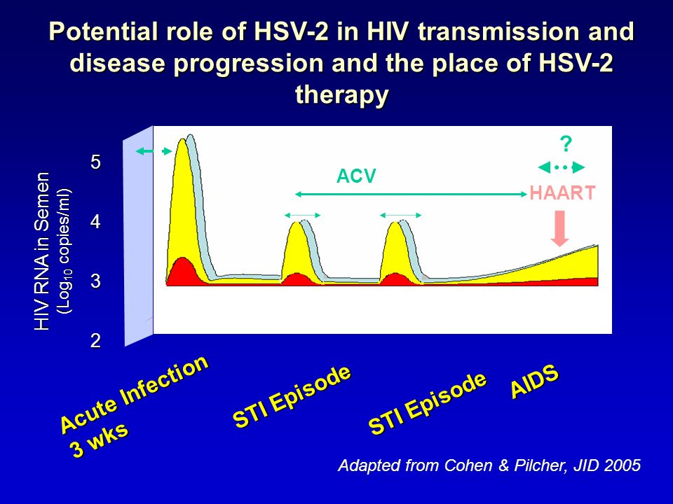 Potential role of HSV-2 in HIV transmission and disease progression and the place of HSV-2 therapy
