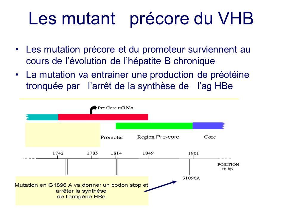 Les mutant précore du VHB