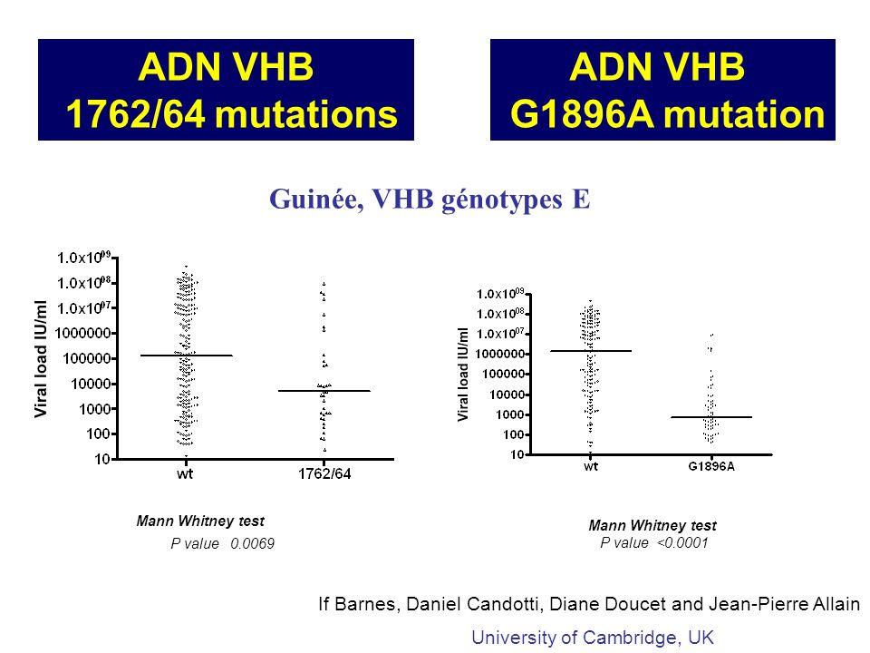ADN VHB 1762/64 mutations ADN VHB G1896A mutation