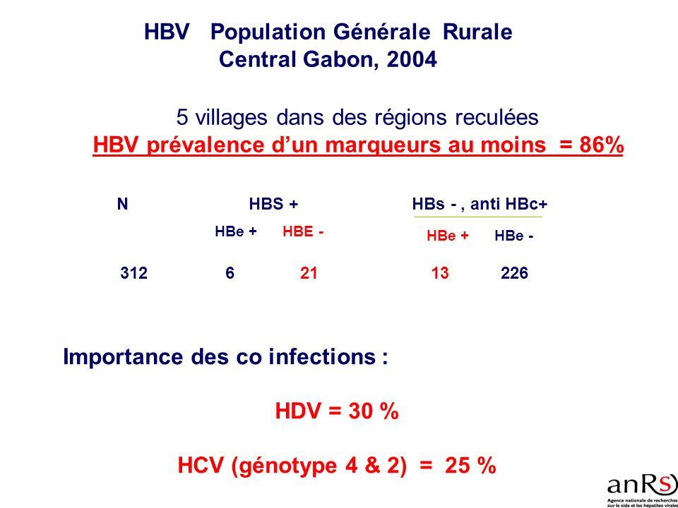 HBV Population Générale Rurale Central Gabon, 2004