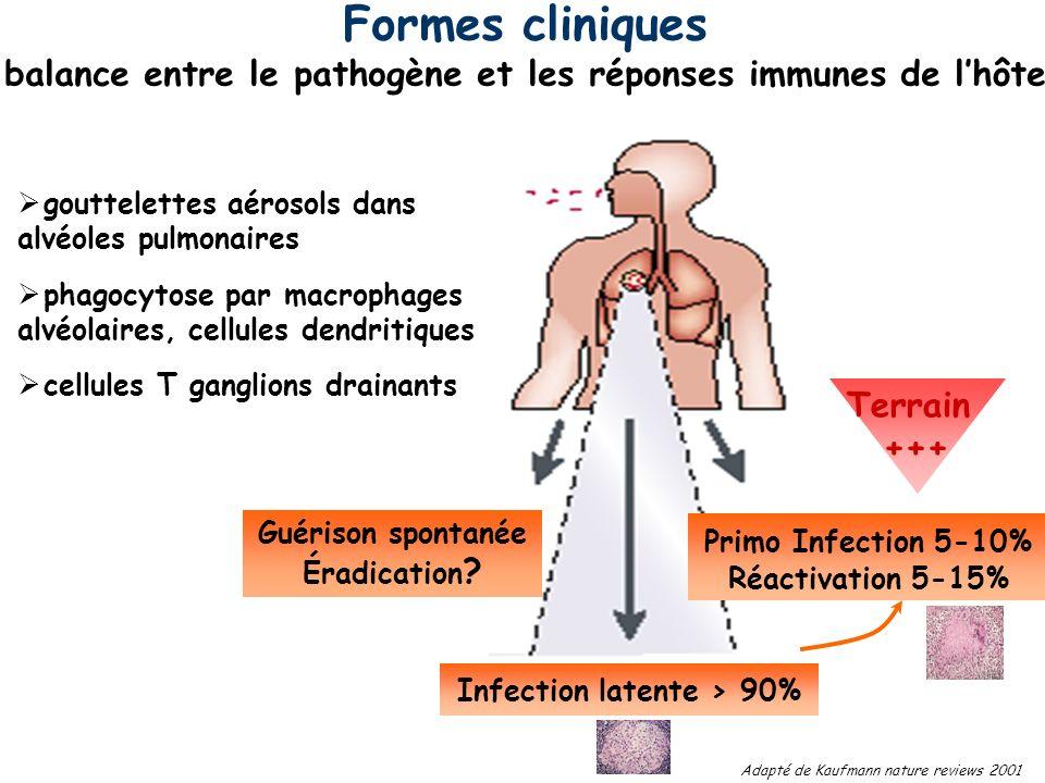 balance entre le pathogène et les réponses immunes de l'hôte