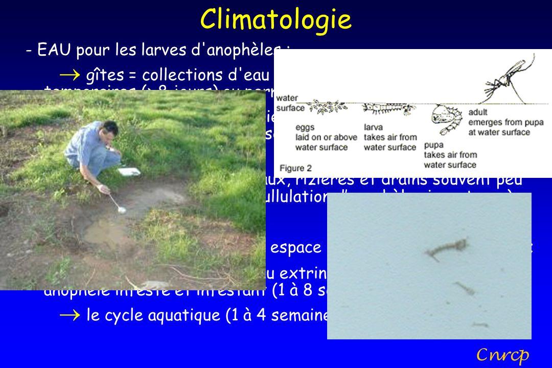 Climatologie - EAU pour les larves d anophèles :